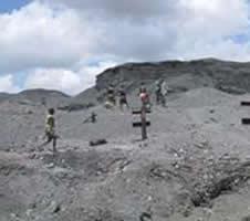 Children scavenging a dump site