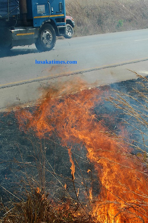 A raging fire along the Great North road in Chisamba where rally drivers were battling it out during the 2009 Zambia motor rally