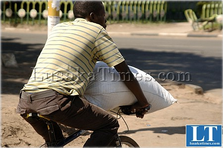An unidentified man transports a bag of mealie meal on a bicycle