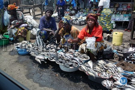 Zambia marketeers land k75bn fund for Bob s fish market