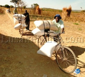Peasant Farmers transporting bags of Maize to the FRA Shem satellite depot in Isoka.