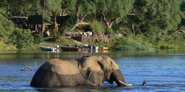 The Unspoilt Lower Zambezi National Park