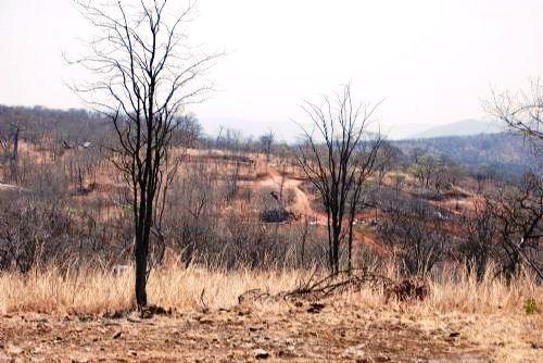 The site of Zambezi Resources' Kangaluwi Copper Project in the Lower Zambezi National Park.