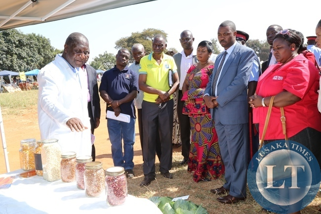 Mount Makulu Woman and Youth chairperson Chipabika Gilson explains to Lusaka Province Minister Phillip Kosamu while Chilanga District Commissioner Edith Muwana listens During the Chilanga District Agricultura show in Chilanga