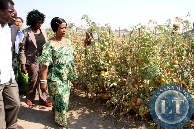 First Lady Esther Lungu during the tour of Lilato Orphanage where she donated foodstuffs to orphaned children in Mongu District in Western Province on Thursday, August 13,2015. The First L:day is in Western Province on the Outreach Programme for People with Special needs  -Picture by THOMAS NSAMA