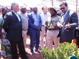 Minister of Agriculture Given Lubinda listens to NCCL Representative Varun Mahajan when he toured Olam plantation today. Looking on is Japanese Ambassador to Zambia Kiyoshi Koinuma, UCCI Representative Tetsuya Seki and Mwinelubemba Chitimukulu Kanyanta Manga after the inauguration ceremony of the shipping of the coffee beans to Japan produced by Olam Limited