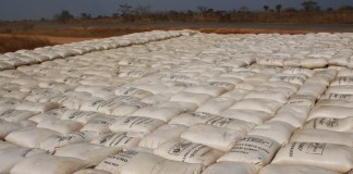 stack of over 14 000 x 50kg bags of maize bought by FRA at Chipoka Satellite depot in Mbala