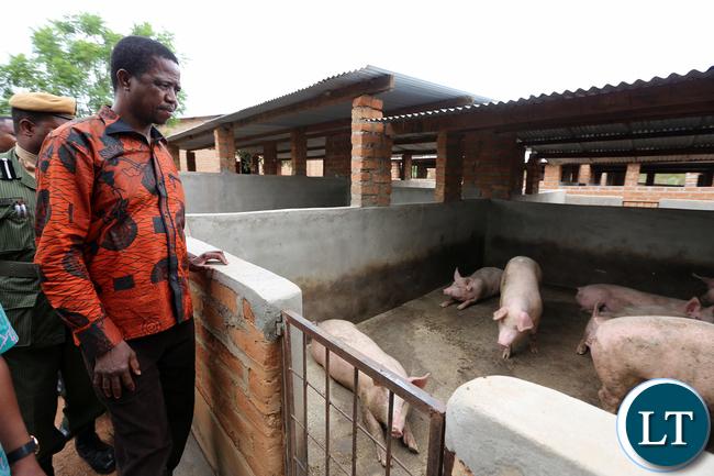 President Edgar Lungu tour Chief Macha farm in Choma on Wednesday 20-1-2016- Picture By Eddie Mwanaleza/statehouse.