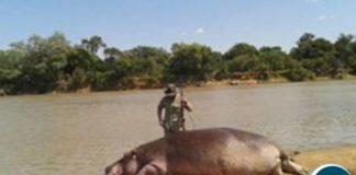 Theo De Marillac, hippo killer of the Luangwa, Pic-Kamisa Malipita