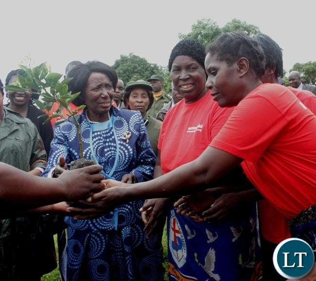Vice President Inonge Mutukwa Wina (c) handing over cashew seedlings to Sibumbu Women group during the memorial service of her late father Mr. Simwinji Mutukwa in Sibumbu Village in Nalolo District, Western Province