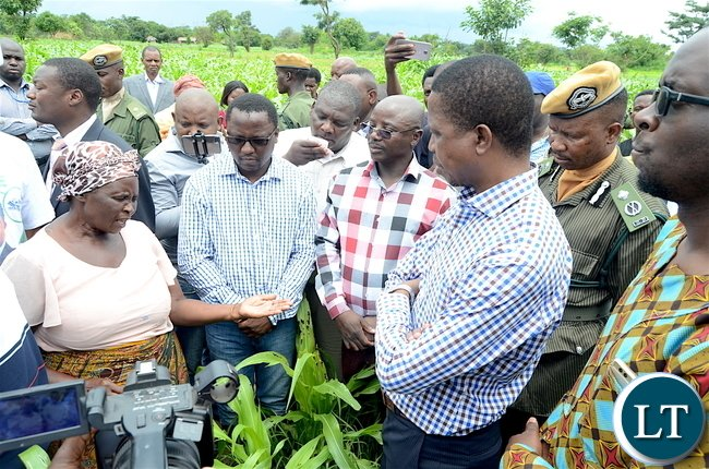 President Lungu with kanfinsa resident Mandalena Yongoma during a tour of    maize fields affected by the army worms in Kanfinsa area in Kitwe on Thursday, January 5,2016-Pictures by THOMAS NSAMA