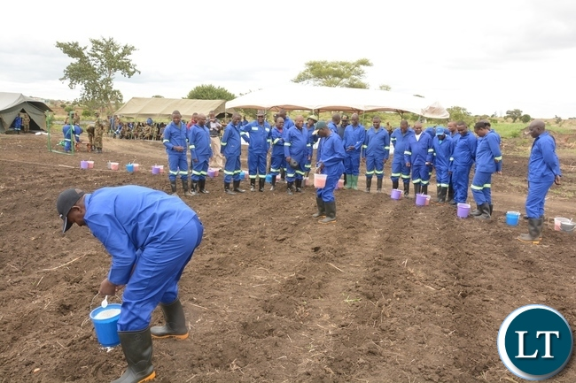 Zambia Army, Chief of Cooperatives Resettlement and Estates Brigadier General Charles Shapi planting maize whilst other Zambia Army Personnel follow suit shortly after officially launching the 2017-2018 planting at 2ZR Makeni Farm