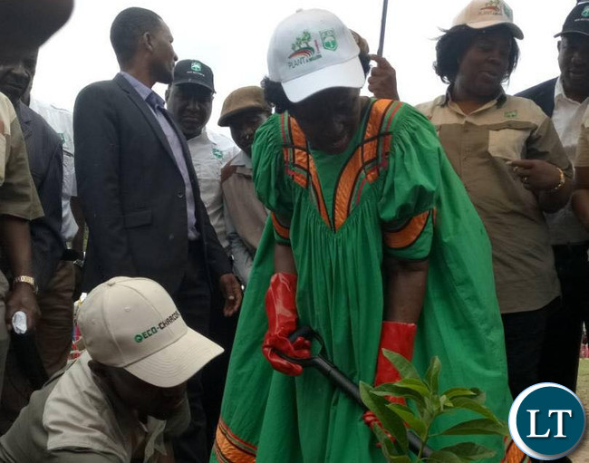 Vice President Inonge Wina launches the national tree planting season 2017/2018