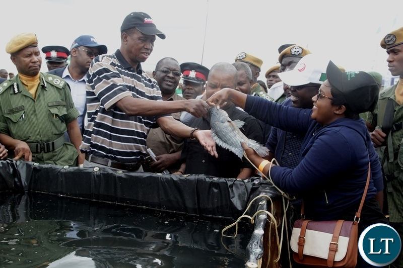 President Edgar Lungu Receives a bream from First Hatch Fisheries Aqua Agricultuist Pumulo Mubiana during the 5th Agriculture Expo in Chisamba