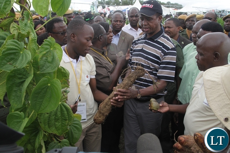 President EdgarLungu is given an organic yam by Monkey Orange crafts Executive Director Michael Mwandila at the 5th Agriculture Expo in Chisamba