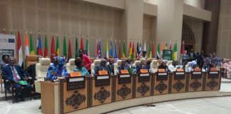 Vice President At The 31st Heads Of States And Government Summit In Nouakchott,Mauritania. Pictures By Kunda Mando
