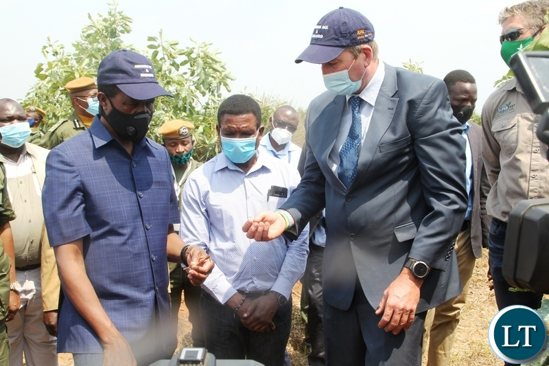 President Edgar Lungu is shown some roots by Mr Stewart Parkes the host farmer of avocado plantation cropit farm in Mkushi .while Agriculture Minister Michael Katambo (centre)looks on
