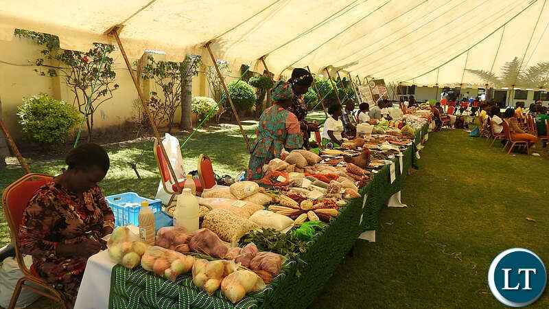 Exhibition at the 2nd National Food and Seed Festival in Lusaka