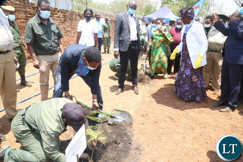 Minister of Agriculture Michael Katembo planting a tree whilst Vice President Inonge Wina looks on during the launch of Msekera Regional Soils Laboratory in Chipata District. Saturday 17, 2020. Picture by ROYD SIBAJENE/ZANIS